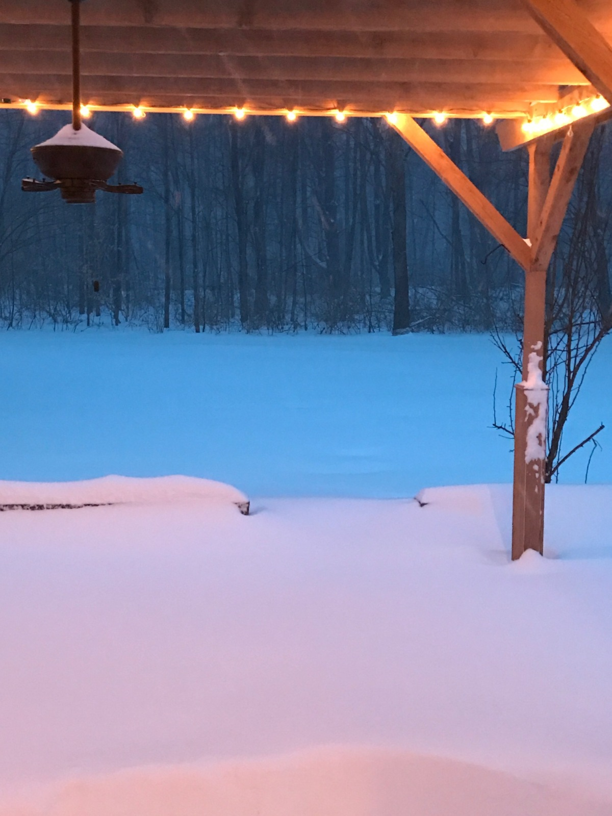 snow3.14.17