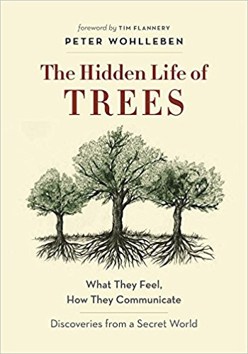 hiddenlifeoftreesbook