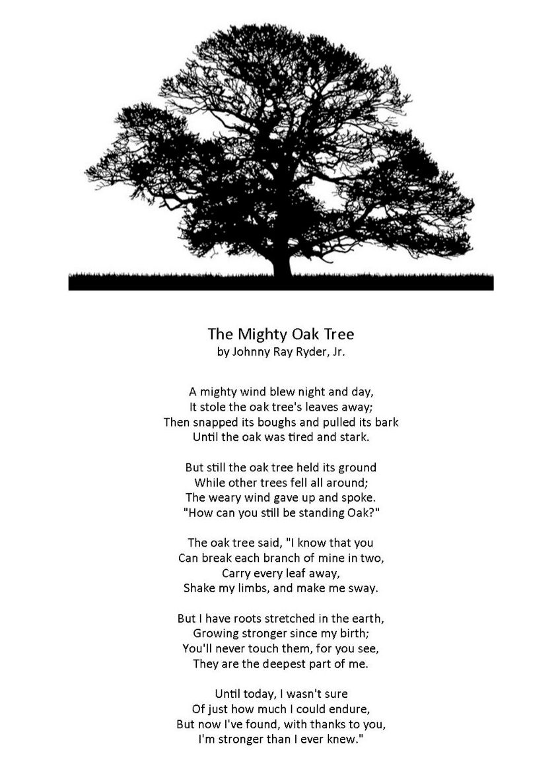 oaktreeimageryforhealing