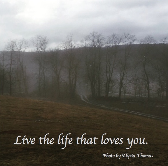 live_the_life_that_loves_you
